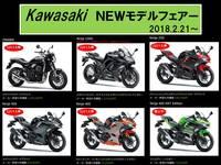 Kawasakiフェアー.jpg